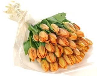 Поспішайте придбати упаковку для квітів оптом!