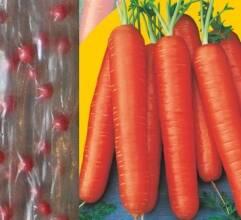 Знижка 50% на насіння моркви на водорозчинній стрічці!!!