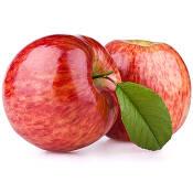 Чемпіон сорт яблук купити (фото)
