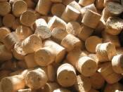 Брикетування відходів насіння (фото)