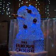 Дегустация The Famous Grouse из льда (фото)