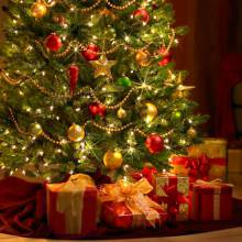 Ялинка та святкові вогники – незамінний атрибут Нового року