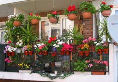 Висячі горщики для квітів вже у продажу!