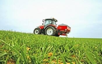 Названо основні елементи осіннього удобрення насіння пшениці озимої.
