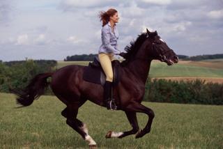 Верховая езда предотвращает стрессы